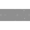 IBM_logo-gray